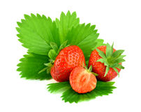 Red strawberry and half with leaves, isolated.. Royalty Free Stock Images