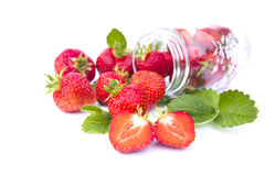 Red strawberry isolated Stock Image