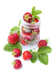 Red strawberry isolated Stock Photography