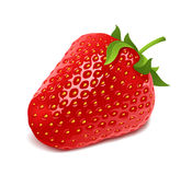 Red strawberry. Juicy red strawberry illustration.  on white background Royalty Free Stock Photography