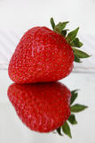 Red strawberry. With a reflection Stock Image