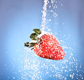 Red strawberry sprinkled with white sugar Royalty Free Stock Images