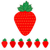 The red strawberry and strawberries. Stock Image