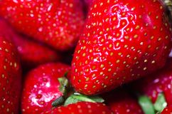 Strawberry macro photo. Red strawberry in a tray macro photo Royalty Free Stock Image