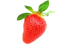 Red strawberry on white background Royalty Free Stock Photo