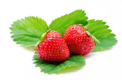 Red strawberry whith leaf  Stock Photos