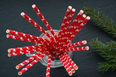 Red straws in mug on black background and spruce. Top view and close up. Shallow dof. Selective focus Stock Image