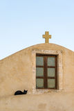 Red stray cat adult on a wall between the medieval streets of th Royalty Free Stock Photography