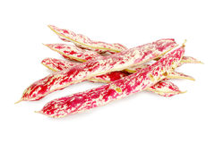 Red string beans Stock Images