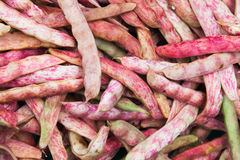 Red string beans lay on counter of food market Royalty Free Stock Photo