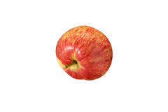 Red striped apple close up on a white background. Royalty Free Stock Images