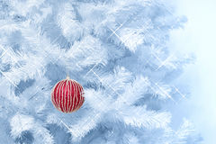 Red striped glitter Christmas bauble hanging on a blue tinted Christmas tree Stock Images