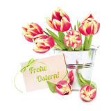 Red stripy tulips and  greeting card Stock Image