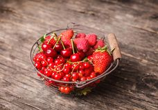 Red summer fruits Royalty Free Stock Image