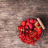 Red summer fruits Stock Images