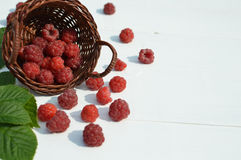Red summer fruits, raspberries Royalty Free Stock Image