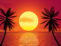 Red Sunset. & Palm (see more in my portfolio Royalty Free Stock Photos