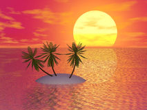 Red Sunset. & Palm (see more in my portfolio Stock Images
