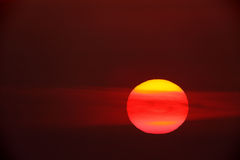 Red sunset. Sunset with a big red sun Stock Photography