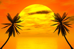 Red sunset Royalty Free Stock Image