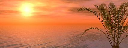 Red sunset. 3d render of a beautiful red sunset Royalty Free Stock Photos