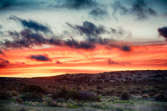 Red sunset background in patagonia Royalty Free Stock Photography