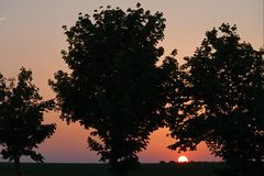Sunset behind trees in Provins in France. Red sunset behind the blach trees on a summer evening in Provins, France Royalty Free Stock Images
