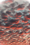 Red sunset cloud formation vertical Royalty Free Stock Photo