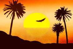 Red sunset in desert with palms. Illustration on a palm tree theme Stock Images