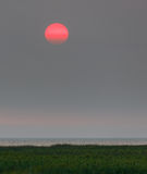 Red sunset in a haze. The smoke from wildfires in BC Interior has wafted into Vancouver. The smoke has made the sun turn red. Aug 2017 Stock Photography