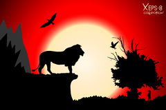 Red sunset in the jungle with mountains, old tree, birds lion and meercat Royalty Free Stock Photography