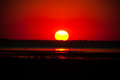 Red sunset near pond Stock Image