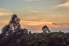 Red sunset over the rain forest royalty free stock image