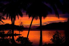 Red sunset and palm trees. A beautiful tropical sunset across the lagoon Royalty Free Stock Photography