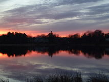 Red sunset reflected over tranquil pond. Clouds reflected over New Hampshire pond at Sunset; Reeds and trees silhouetted against pretty sunset; Tranquil and royalty free stock image
