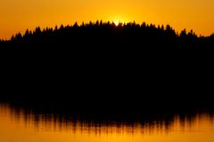 Red sunset and trees silhouette Royalty Free Stock Image