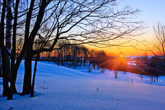 Red sunset in a winter forest. Russia Royalty Free Stock Images