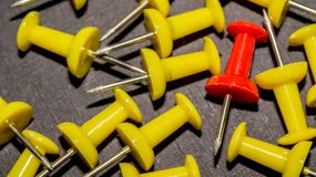 Red surrounded by yellow push pins. royalty free stock photography