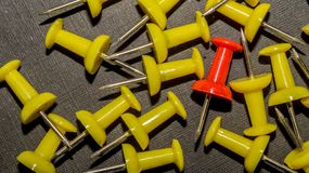 Red surrounded by yellow push pins. stock images