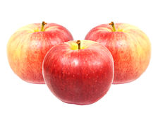 Red sweet apples Stock Photo