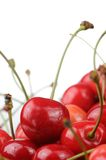 Red Sweet Cherries Close-Up on White Background Royalty Free Stock Image