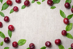 Red sweet cherry berry frame or border. stock photography