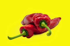 Red Sweet Paprika Long Peppers Stock Images