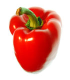 Red sweet pepper Royalty Free Stock Photos
