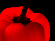 Red sweet pepper, bellpepper closeup detail Royalty Free Stock Photo