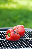 Red sweet pepper on a grill Stock Images