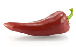 Red sweet pepper on a white background Stock Images