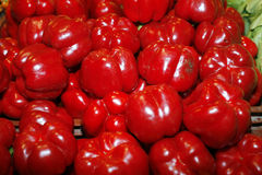 Red sweet peppers Royalty Free Stock Photos