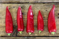 Red sweet pointed peppers in a row on rustic wood Royalty Free Stock Image