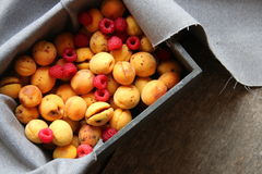 Ripe raspberries and apricots Royalty Free Stock Image